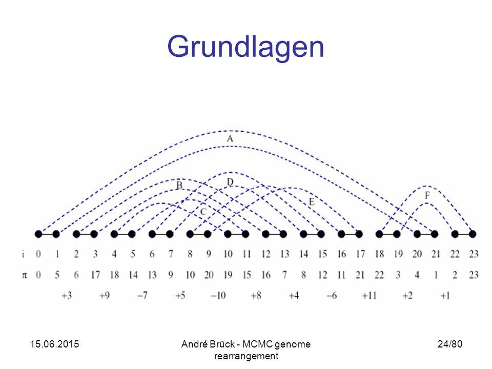 15.06.2015André Brück - MCMC genome rearrangement 24/80 Grundlagen