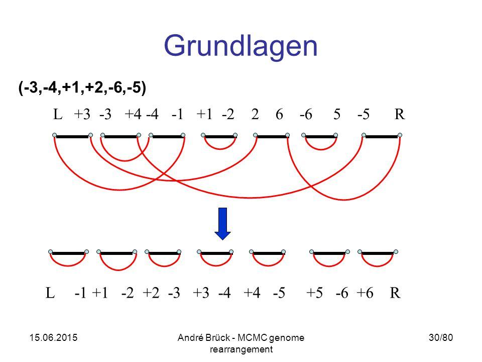 15.06.2015André Brück - MCMC genome rearrangement 30/80 Grundlagen L +3 -3 +4 -4 -1 +1 -2 2 6 -6 5 -5 R L -1 +1 -2 +2 -3 +3 -4 +4 -5 +5 -6 +6 R (-3,-4,+1,+2,-6,-5)