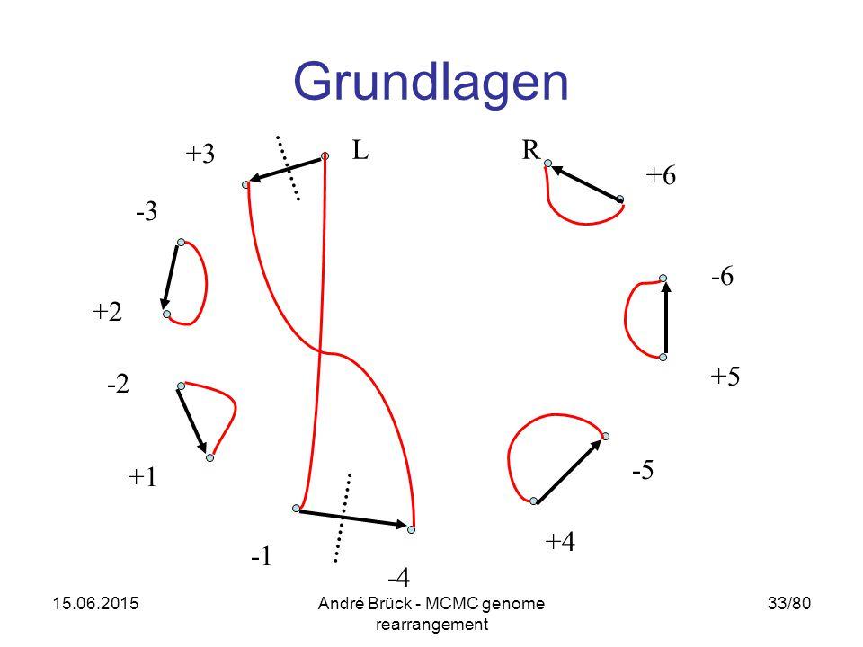 15.06.2015André Brück - MCMC genome rearrangement 33/80 Grundlagen -3 +3 +5 +6 -6 +4 -5 -4 +1 +2 -2 LR