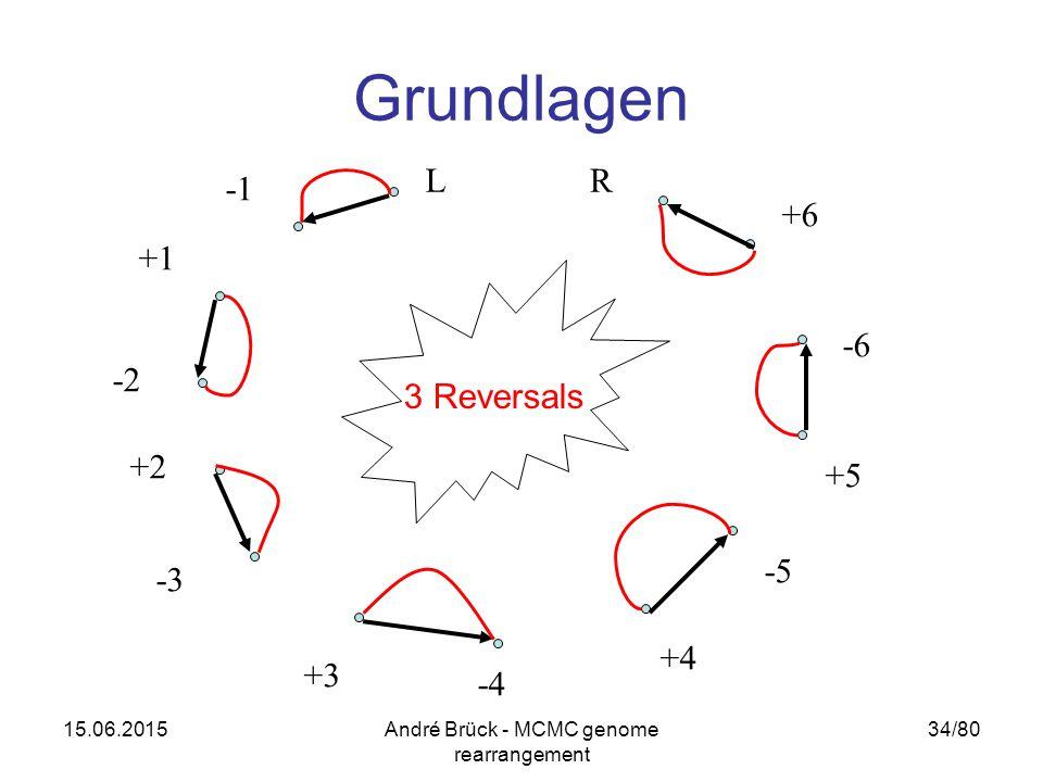 15.06.2015André Brück - MCMC genome rearrangement 34/80 Grundlagen +1 +6 +4 -5 -4 +3 -3 -2 +2 RL -6 +5 3 Reversals