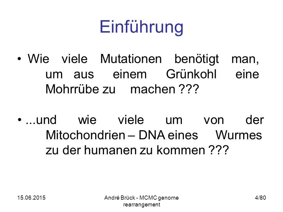 15.06.2015André Brück - MCMC genome rearrangement 4/80 Einführung Wie viele Mutationen benötigt man, um aus einem Grünkohl eine Mohrrübe zu machen ...und wie viele um von der Mitochondrien – DNA eines Wurmes zu der humanen zu kommen
