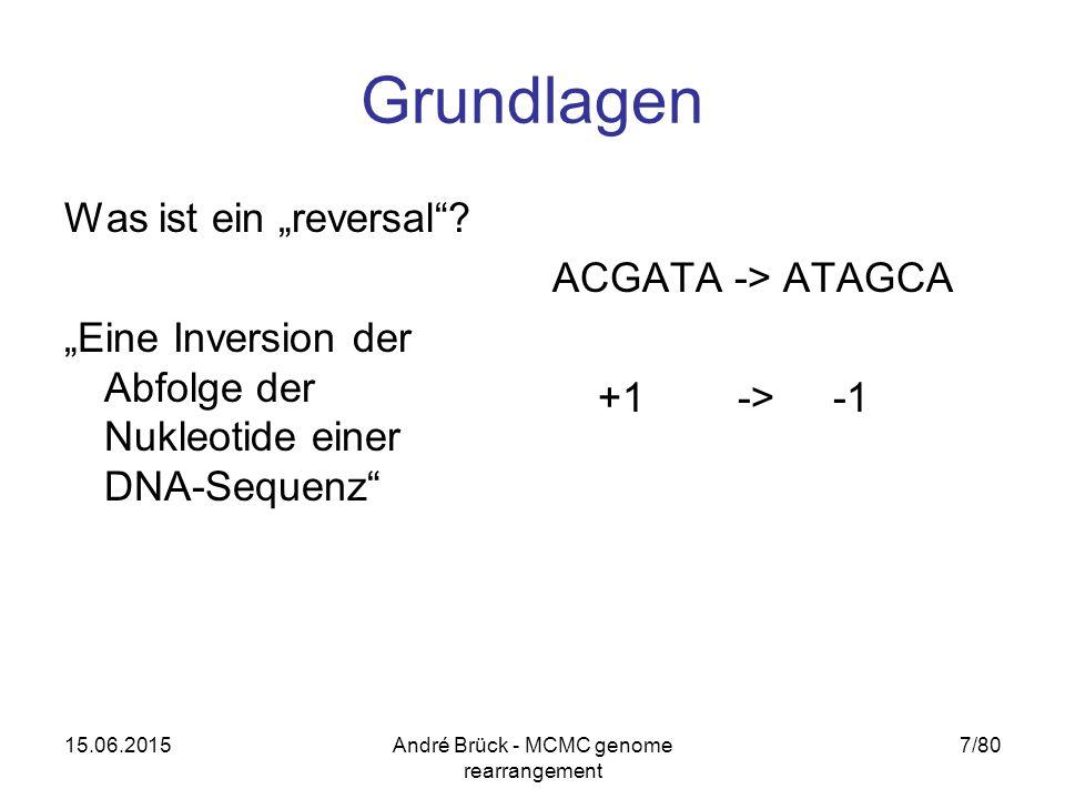"""15.06.2015André Brück - MCMC genome rearrangement 7/80 Grundlagen Was ist ein """"reversal""""? """"Eine Inversion der Abfolge der Nukleotide einer DNA-Sequenz"""