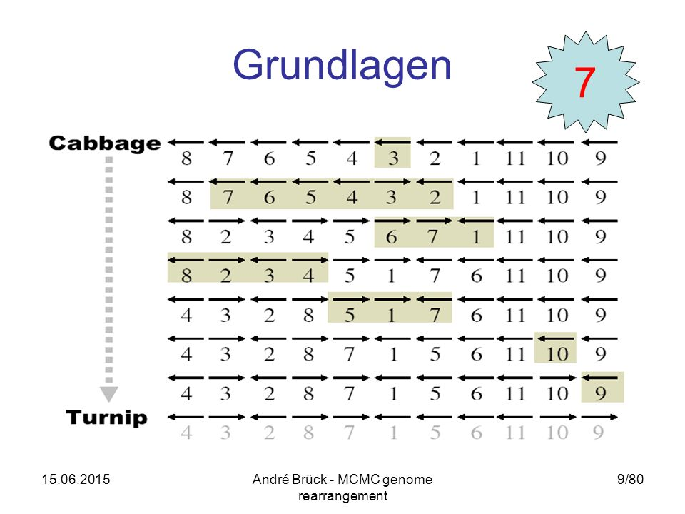 15.06.2015André Brück - MCMC genome rearrangement 9/80 Grundlagen 7