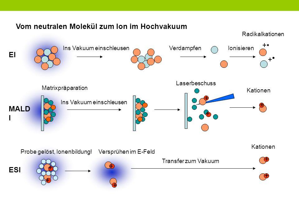 Vom neutralen Molekül zum Ion im Hochvakuum + Ins Vakuum einschleusen ++ VerdampfenIonisieren Radikalkationen + + Probe gelöst, Ionenbildung!Versprü