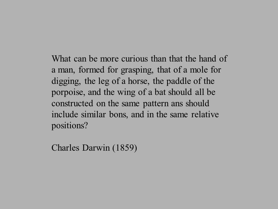 What can be more curious than that the hand of a man, formed for grasping, that of a mole for digging, the leg of a horse, the paddle of the porpoise, and the wing of a bat should all be constructed on the same pattern ans should include similar bons, and in the same relative positions.