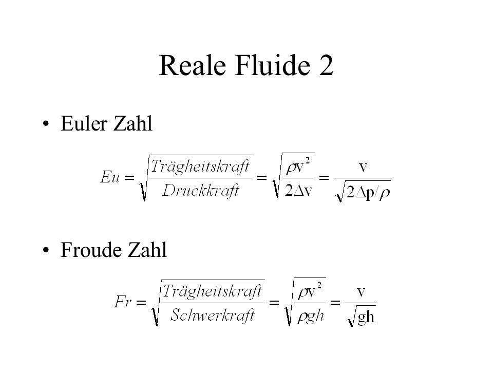 Reale Fluide 2 Euler Zahl Froude Zahl