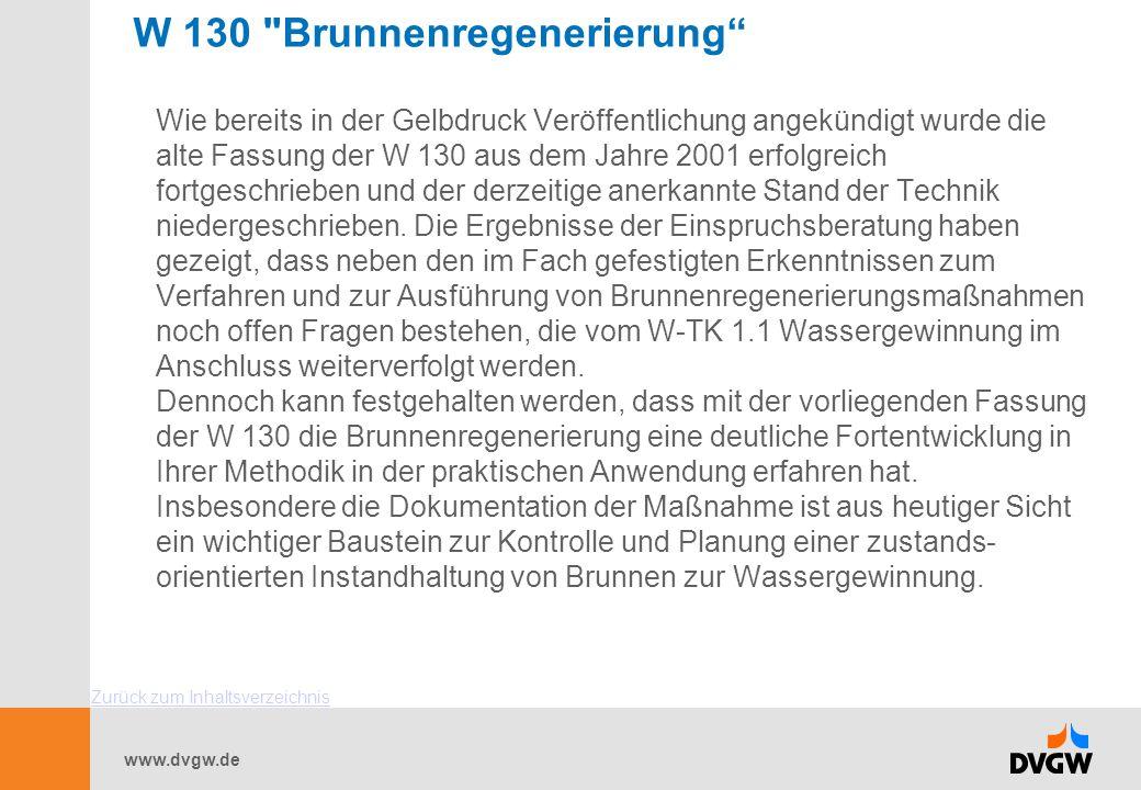 www.dvgw.de W 130