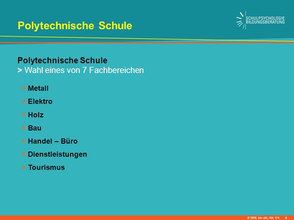 © 2008, bm:ukk, Abt. V/4 Polytechnische Schule > Wahl eines von 7 Fachbereichen > Metall > Elektro > Holz > Bau > Handel – Büro > Dienstleistungen > T