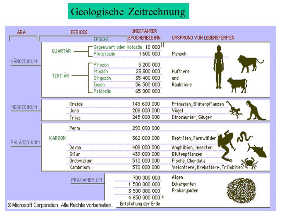 Geologische Zeitrechnung