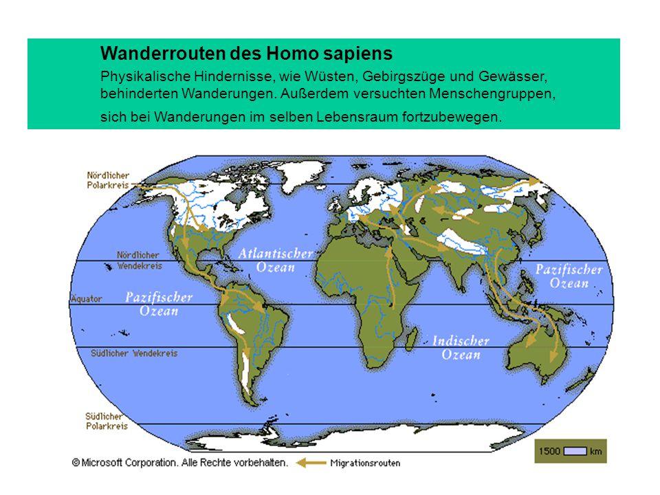 Wanderrouten des Homo sapiens Physikalische Hindernisse, wie Wüsten, Gebirgszüge und Gewässer, behinderten Wanderungen.