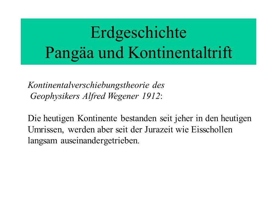 Erdgeschichte Pangäa und Kontinentaltrift Kontinentalverschiebungstheorie des Geophysikers Alfred Wegener 1912: Die heutigen Kontinente bestanden seit jeher in den heutigen Umrissen, werden aber seit der Jurazeit wie Eisschollen langsam auseinandergetrieben.