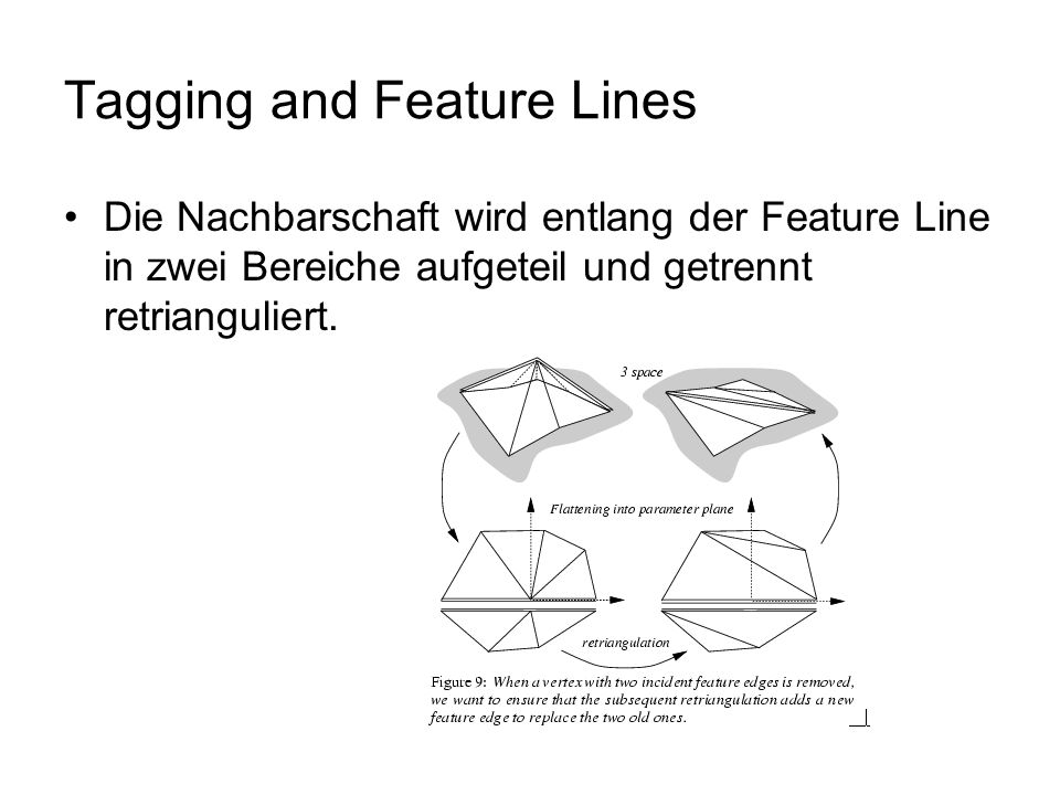 Tagging and Feature Lines Die Nachbarschaft wird entlang der Feature Line in zwei Bereiche aufgeteil und getrennt retrianguliert.