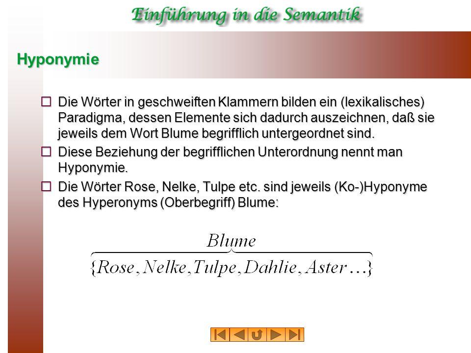 Hyponymie  Die Wörter in geschweiften Klammern bilden ein (lexikalisches) Paradigma, dessen Elemente sich dadurch auszeichnen, daß sie jeweils dem Wo