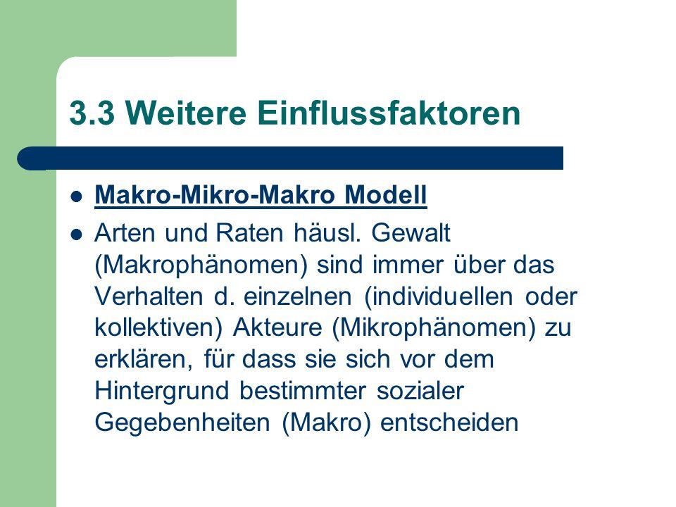 3.3 Weitere Einflussfaktoren Makro-Mikro-Makro Modell Arten und Raten häusl. Gewalt (Makrophänomen) sind immer über das Verhalten d. einzelnen (indivi