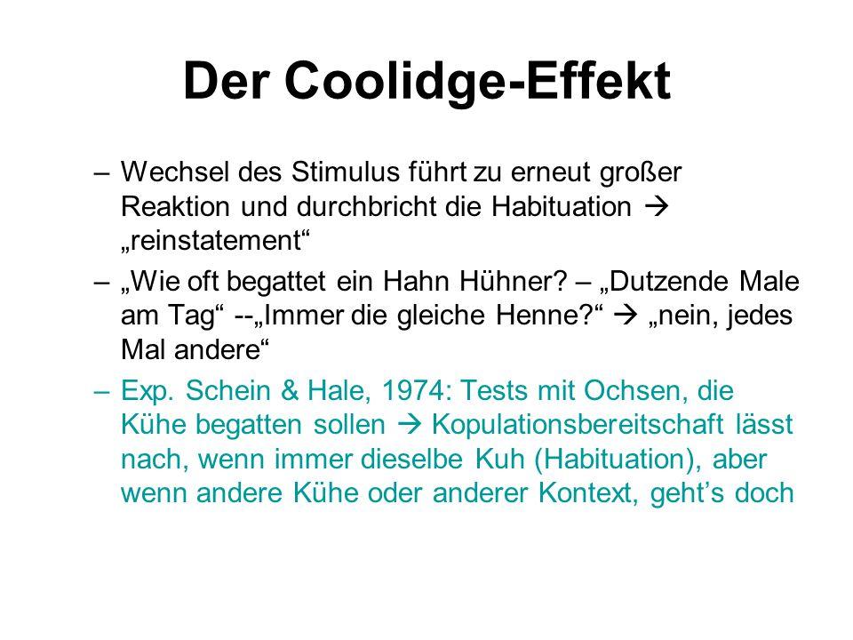 """Der Coolidge-Effekt –Wechsel des Stimulus führt zu erneut großer Reaktion und durchbricht die Habituation  """"reinstatement"""" –""""Wie oft begattet ein Hah"""