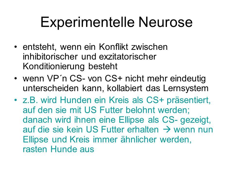 Experimentelle Neurose entsteht, wenn ein Konflikt zwischen inhibitorischer und exzitatorischer Konditionierung besteht wenn VP´n CS- von CS+ nicht me