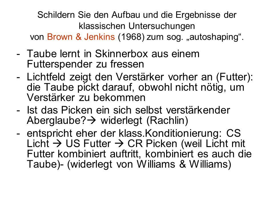 """Schildern Sie den Aufbau und die Ergebnisse der klassischen Untersuchungen von Brown & Jenkins (1968) zum sog. """"autoshaping"""". -Taube lernt in Skinnerb"""