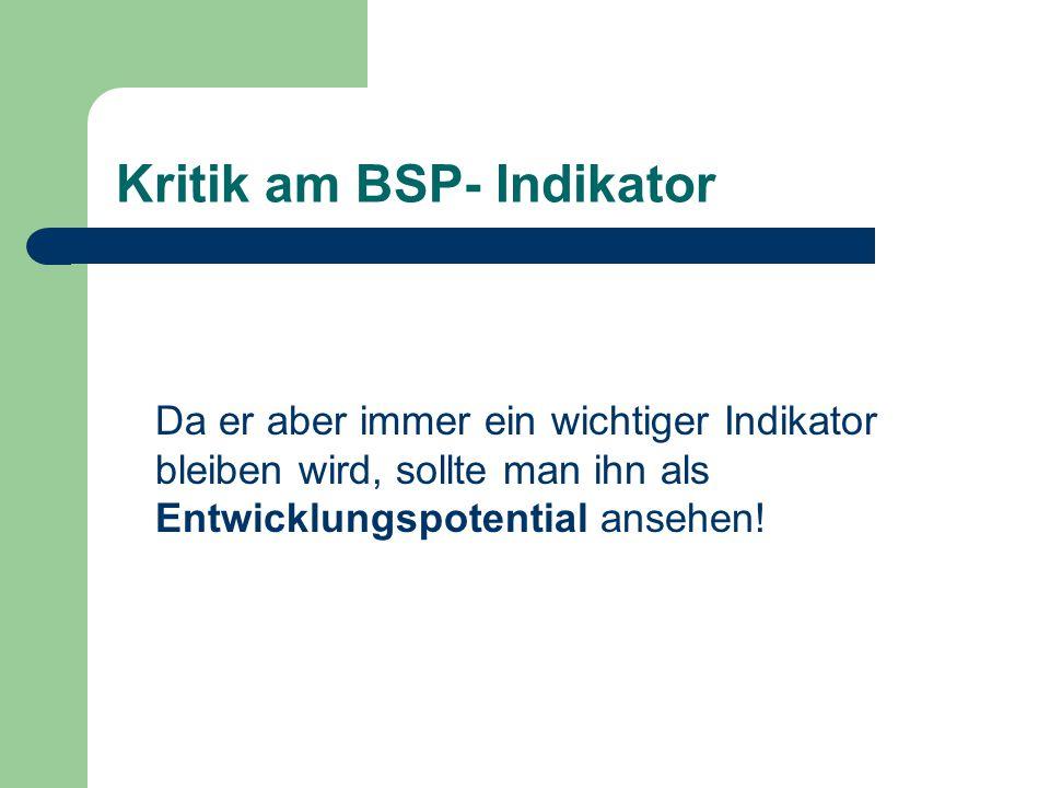 Kritik am BSP- Indikator Da er aber immer ein wichtiger Indikator bleiben wird, sollte man ihn als Entwicklungspotential ansehen!