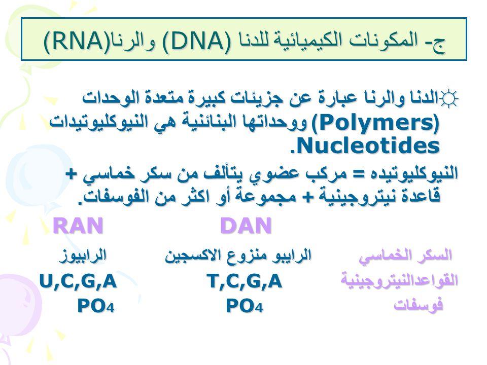 ج - المكونات الكيميائية للدنا (DNA) والرنا (RNA) ☼الدنا والرنا عبارة عن جزيئات كبيرة متعدة الوحدات (Polymers) ووحداتها البنائنية هي النيوكليوتيدات Nuc