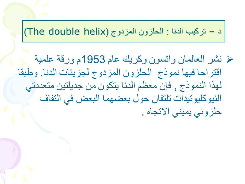 د – تركيب الدنا : الحلزون المزدوج (The double helix)  نشر العالمان واتسون وكريك عام 1953 م ورقة علمية اقتراحا فيها نموذج الحلزون المزدوج لجزيئات الدن