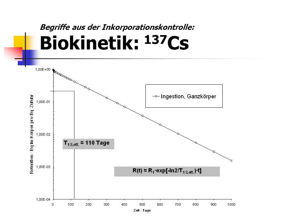 Begriffe aus der Inkorporationskontrolle: Biokinetik: 137 Cs