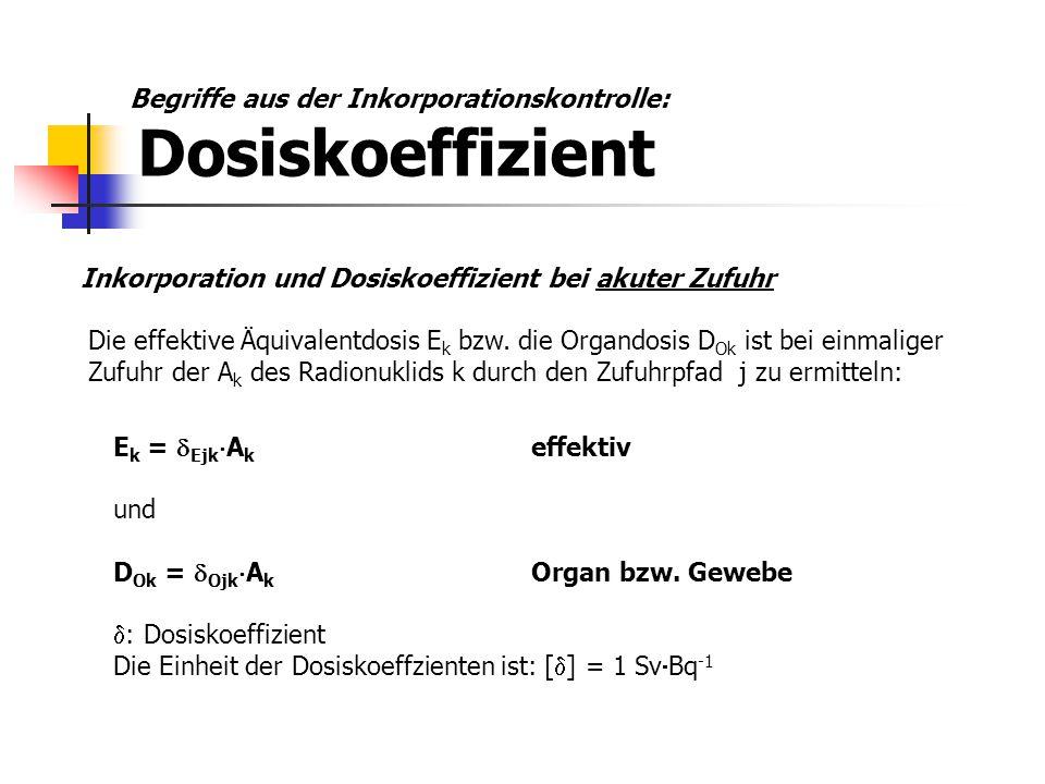 Inkorporation und Dosiskoeffizient bei akuter Zufuhr Die effektive Äquivalentdosis E k bzw. die Organdosis D Ok ist bei einmaliger Zufuhr der A k des