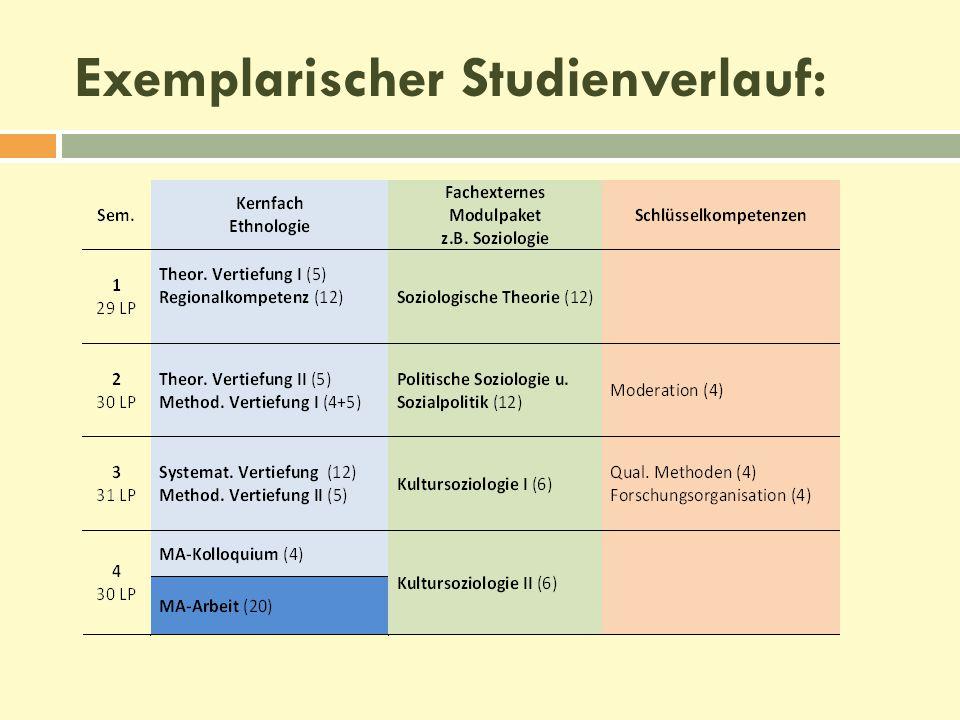 Exemplarischer Studienverlauf: