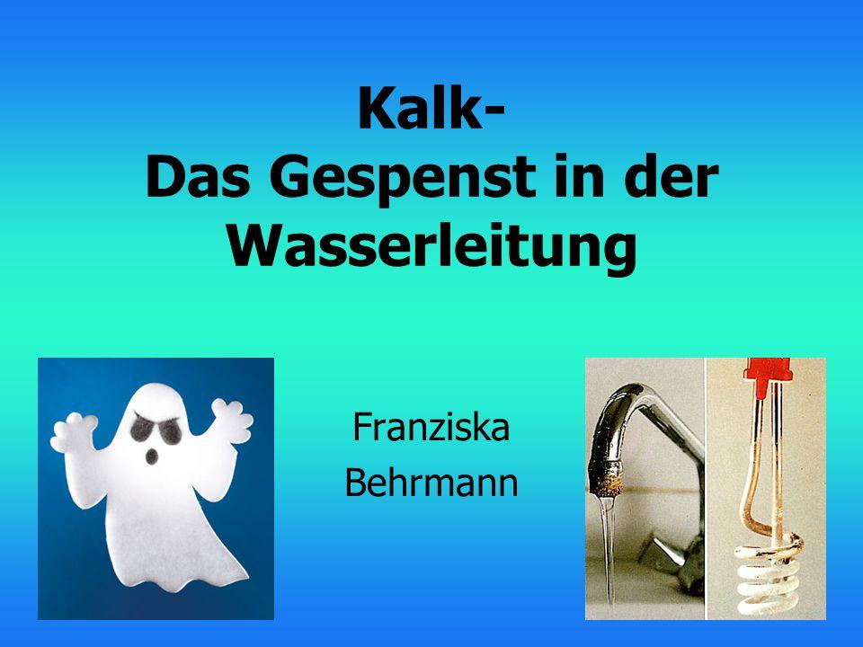 Kalk- Das Gespenst in der Wasserleitung Franziska Behrmann