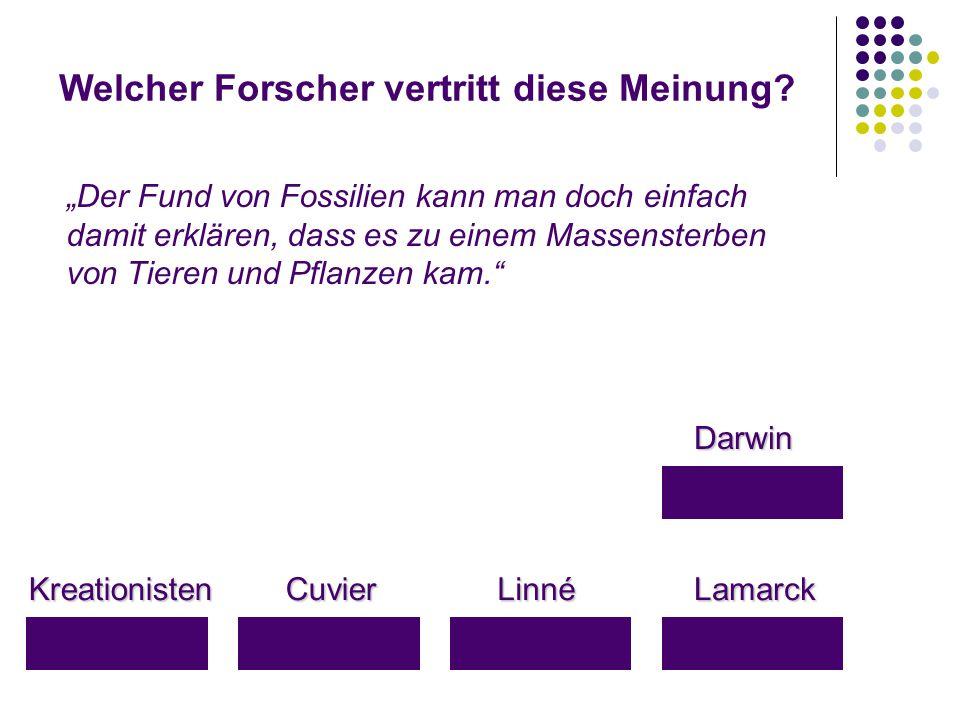"""Welcher Forscher vertritt diese Meinung? KreationistenLamarckLinnéCuvier Darwin """"Der Fund von Fossilien kann man doch einfach damit erklären, dass es"""