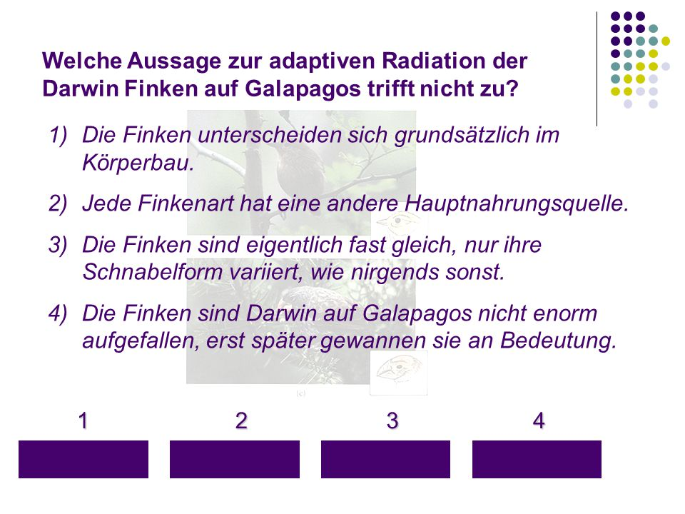 Welche Aussage zur adaptiven Radiation der Darwin Finken auf Galapagos trifft nicht zu? 1 4 3 2 1)Die Finken unterscheiden sich grundsätzlich im Körpe