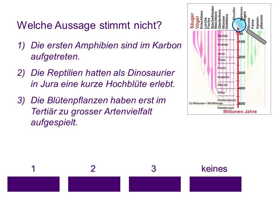 Welche Aussage stimmt nicht? 1 keines keines 3 2 1)Die ersten Amphibien sind im Karbon aufgetreten. 2)Die Reptilien hatten als Dinosaurier in Jura ein