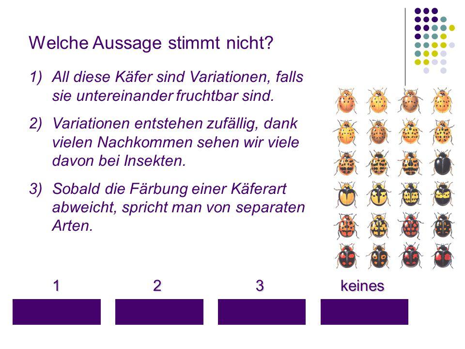 Welche Aussage stimmt nicht? 1 keines keines 3 2 1)All diese Käfer sind Variationen, falls sie untereinander fruchtbar sind. 2)Variationen entstehen z
