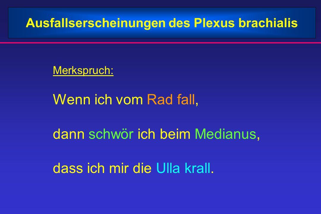 Ausfallserscheinungen des Plexus brachialis Merkspruch: Wenn ich vom Rad fall, dann schwör ich beim Medianus, dass ich mir die Ulla krall.