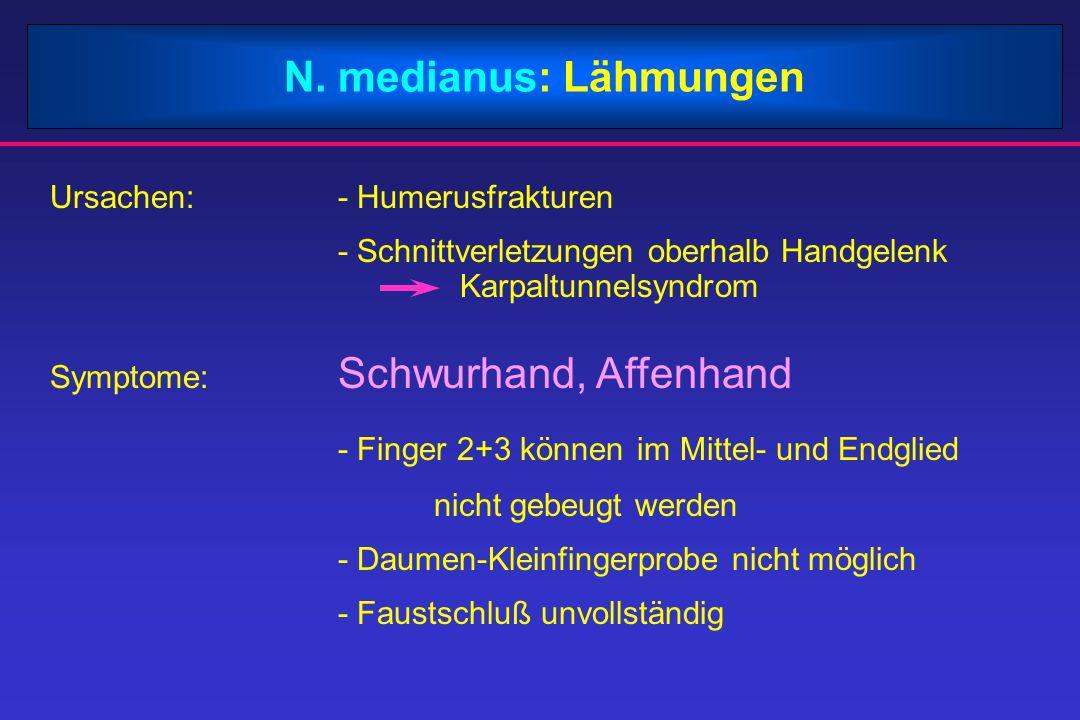N. medianus: Lähmungen Ursachen:- Humerusfrakturen - Schnittverletzungen oberhalb Handgelenk Karpaltunnelsyndrom Symptome: Schwurhand, Affenhand - Fin