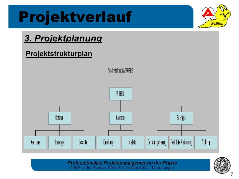Professionelles Projektmanagement in der Praxis © 2003 Jochen Bauereis, Daniel Eck, Andreas Geißler, Tobias Langner 7 3. Projektplanung Projektstruktu
