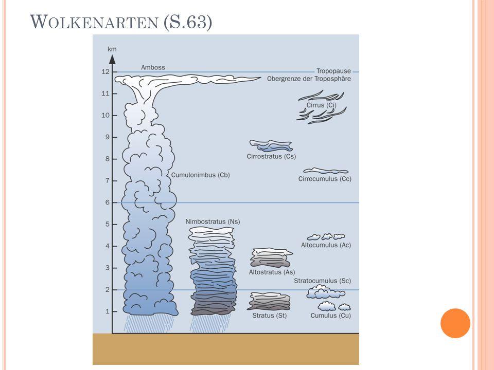 W OLKENARTEN (S.63)
