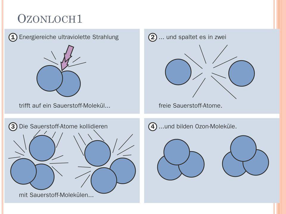 O ZONLOCH 1