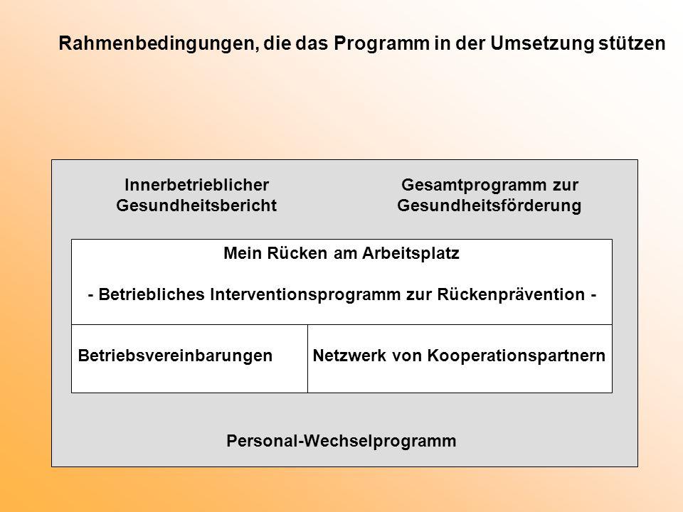 Rahmenbedingungen, die das Programm in der Umsetzung stützen Mein Rücken am Arbeitsplatz - Betriebliches Interventionsprogramm zur Rückenprävention -