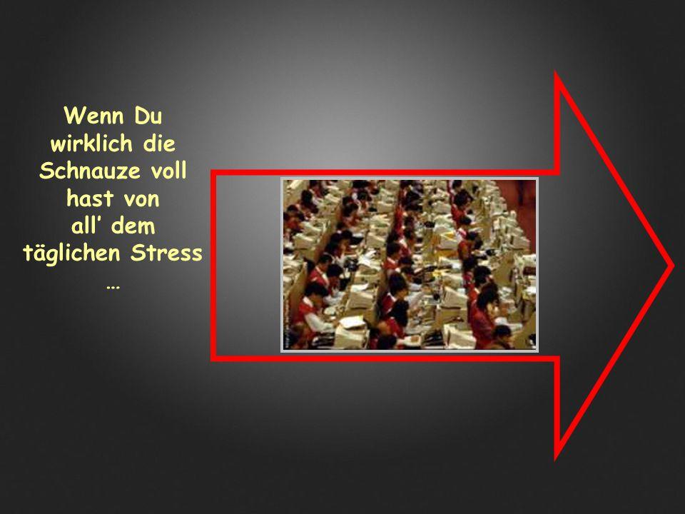 Wenn Du wirklich die Schnauze voll hast von all' dem täglichen Stress …