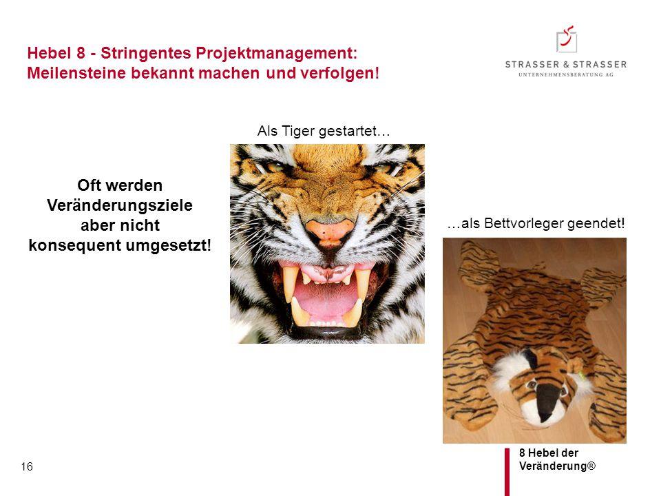 8 Hebel der Veränderung® Hebel 8 - Stringentes Projektmanagement: Meilensteine bekannt machen und verfolgen! 16 Oft werden Veränderungsziele aber nich