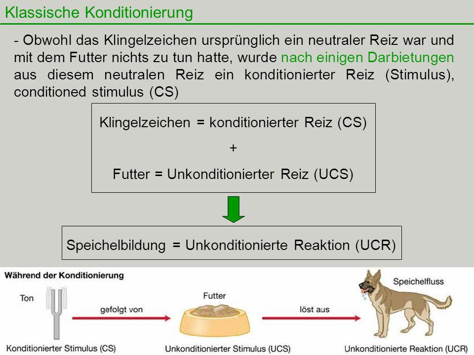 19 Klassische Konditionierung Klingelzeichen = konditionierter Reiz (CS) + Futter = Unkonditionierter Reiz (UCS) Speichelbildung = Unkonditionierte Re