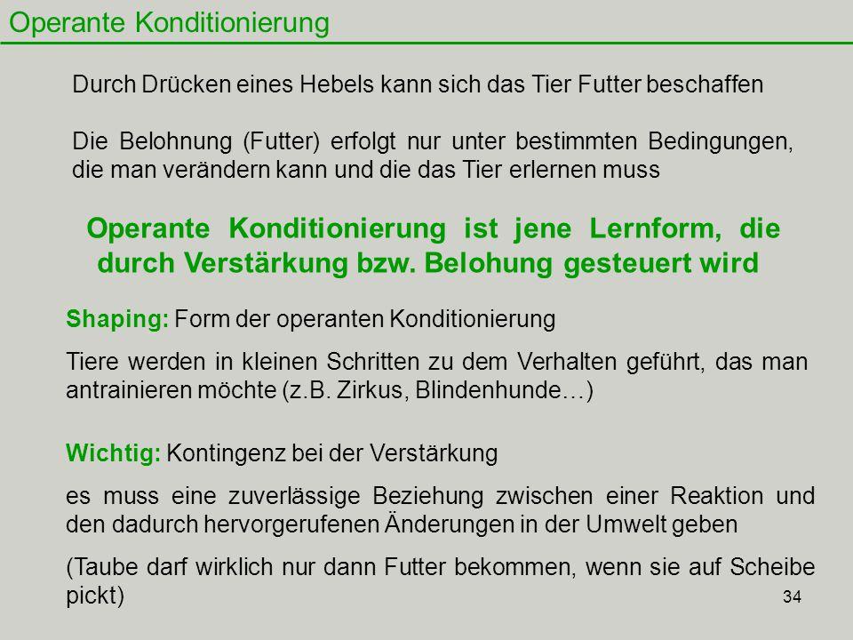 34 Operante Konditionierung Operante Konditionierung ist jene Lernform, die durch Verstärkung bzw. Belohung gesteuert wird Durch Drücken eines Hebels