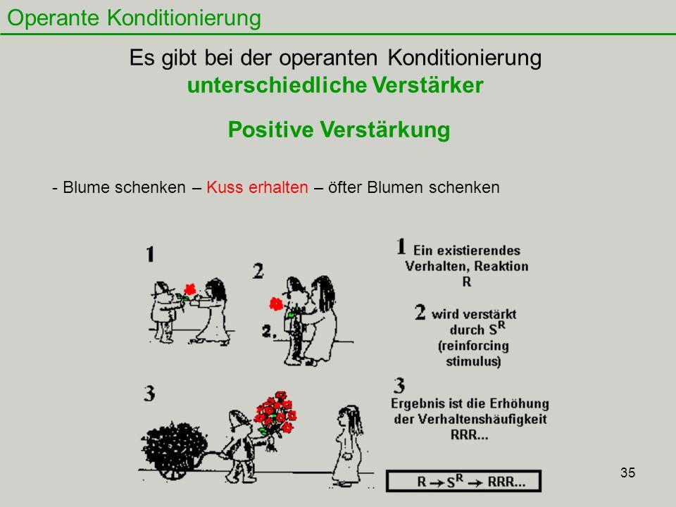 35 Operante Konditionierung Es gibt bei der operanten Konditionierung unterschiedliche Verstärker Positive Verstärkung - Blume schenken – Kuss erhalte