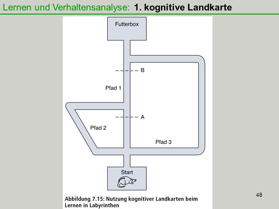 48 Lernen und Verhaltensanalyse: 1. kognitive Landkarte