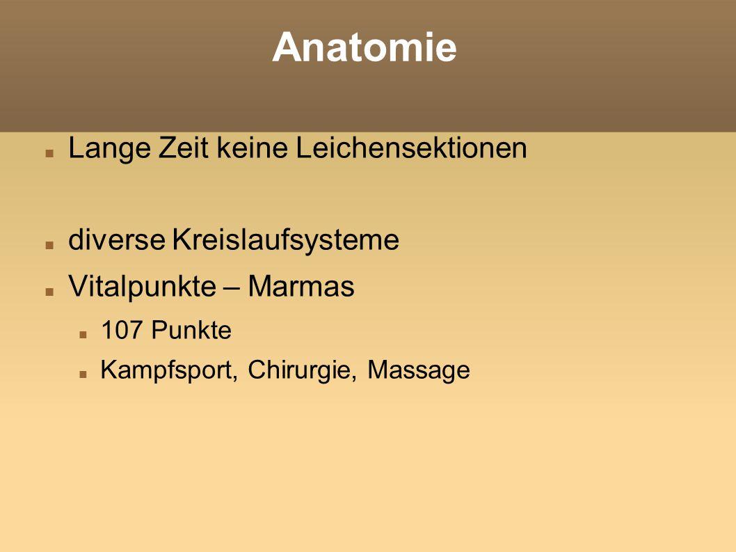 Anatomie Lange Zeit keine Leichensektionen diverse Kreislaufsysteme Vitalpunkte – Marmas 107 Punkte Kampfsport, Chirurgie, Massage