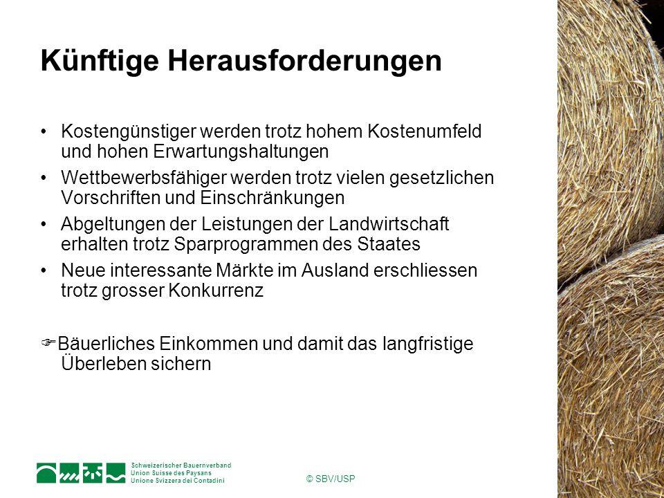 Schweizerischer Bauernverband Union Suisse des Paysans Unione Svizzera dei Contadini © SBV/USP Künftige Herausforderungen Kostengünstiger werden trotz hohem Kostenumfeld und hohen Erwartungshaltungen Wettbewerbsfähiger werden trotz vielen gesetzlichen Vorschriften und Einschränkungen Abgeltungen der Leistungen der Landwirtschaft erhalten trotz Sparprogrammen des Staates Neue interessante Märkte im Ausland erschliessen trotz grosser Konkurrenz  Bäuerliches Einkommen und damit das langfristige Überleben sichern