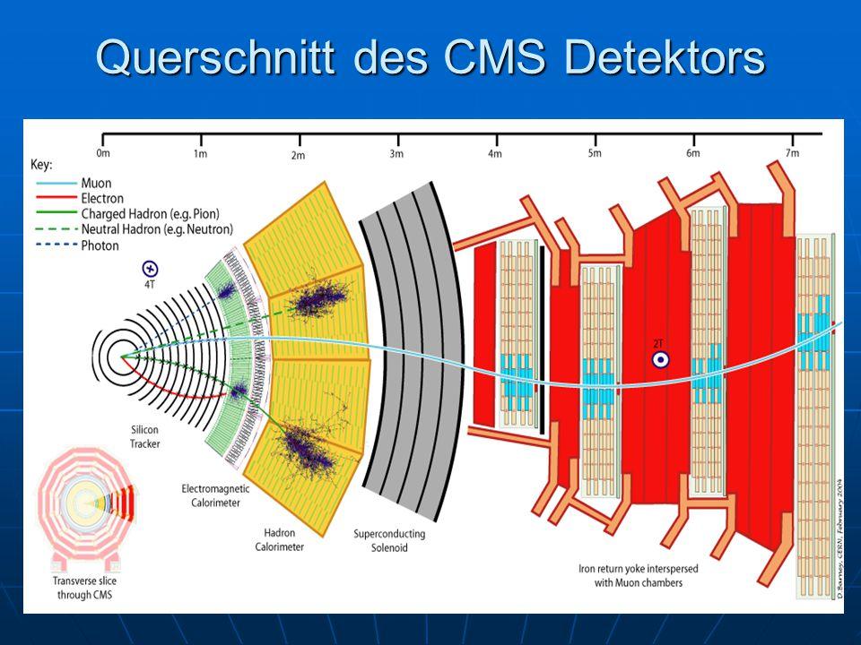 Querschnitt des CMS Detektors