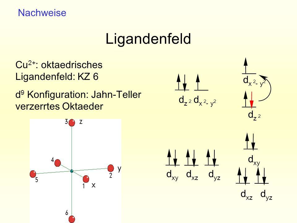 2 dzdz Ligandenfeld Cu 2+ : oktaedrisches Ligandenfeld: KZ 6 d 9 Konfiguration: Jahn-Teller verzerrtes Oktaeder d x - y d xy d yz d xz d yz d xz d xy
