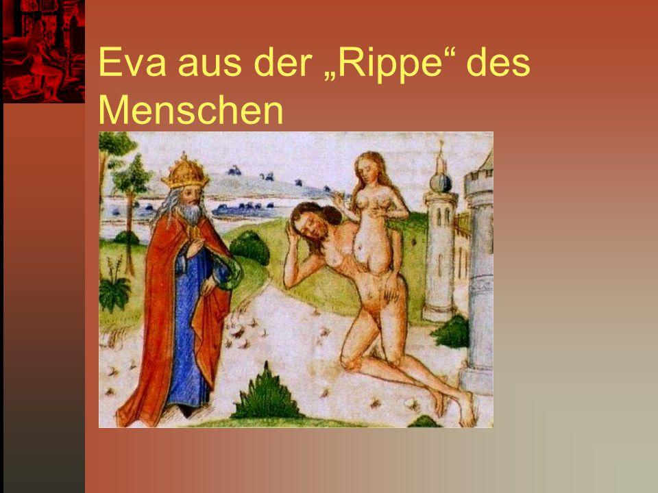 """Eva aus der """"Rippe"""" des Menschen"""