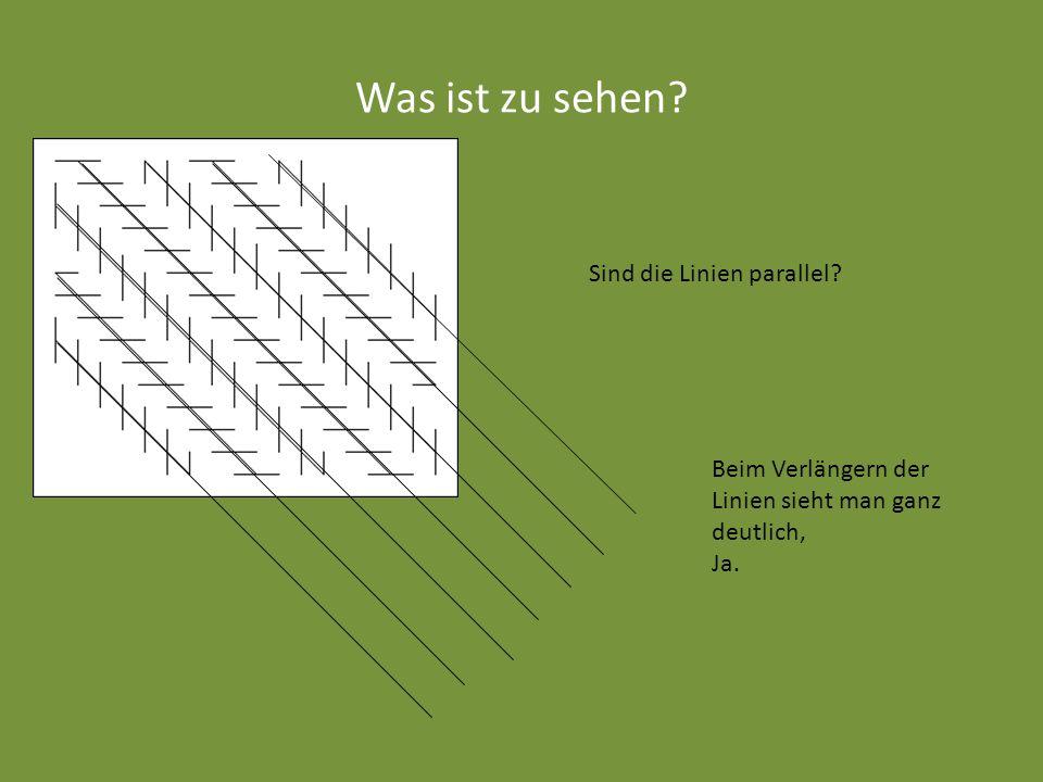Was ist zu sehen? Sind die Linien parallel? Beim Verlängern der Linien sieht man ganz deutlich, Ja.